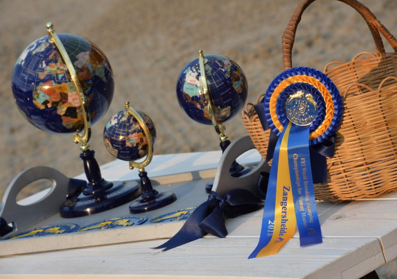 FEI / WBFSH World breeding jumping championships for young horses
