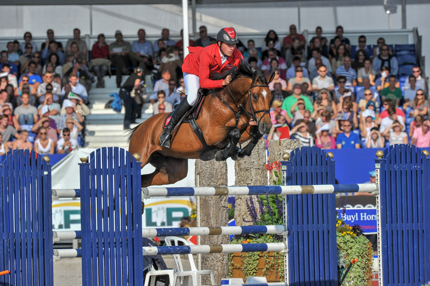 FEI World Breeding Jumping Championships for Young Horses  2011