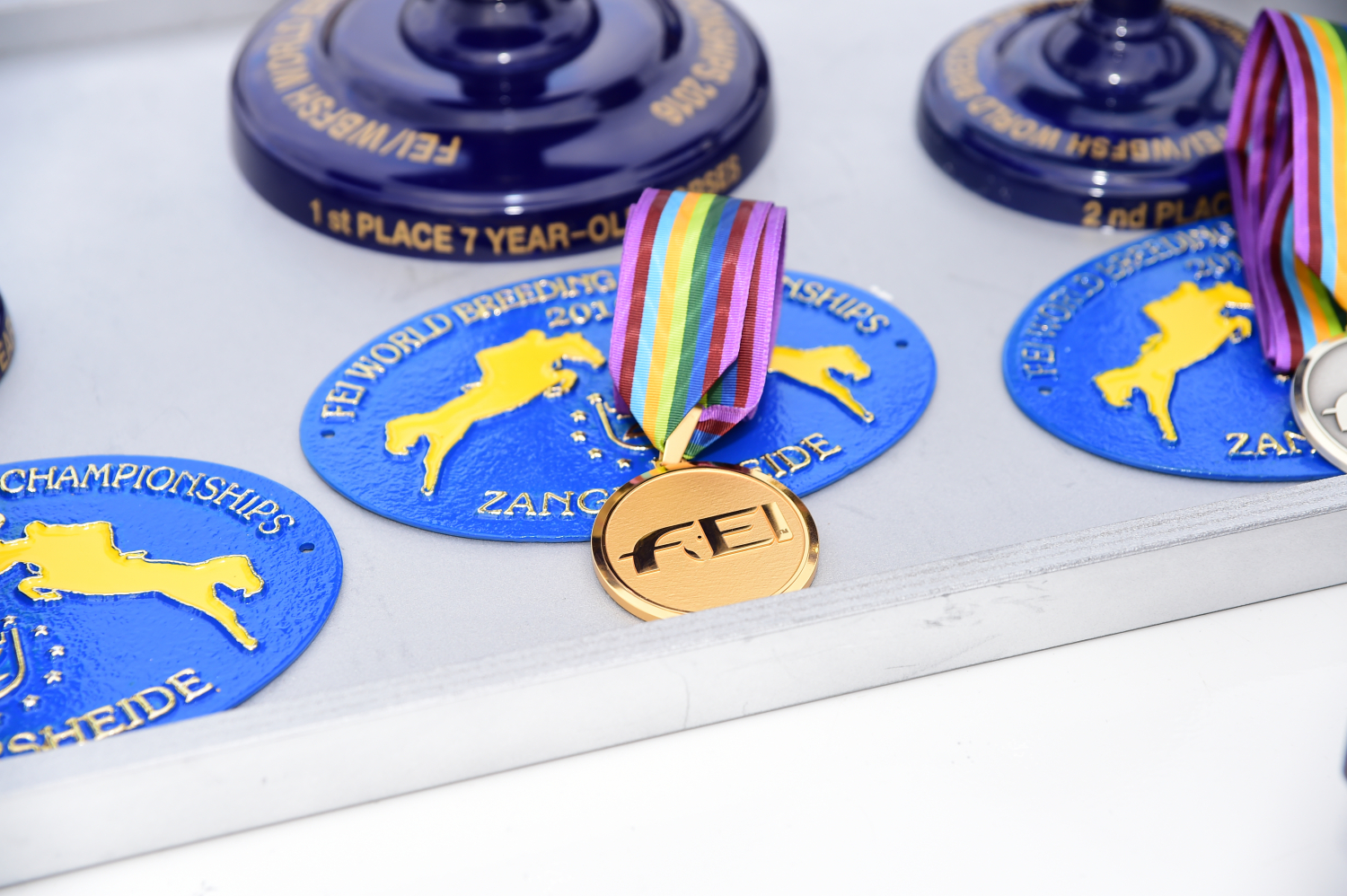 FEI World Breeding Jumping Championships for Young Horses 14 - 18 september 2016